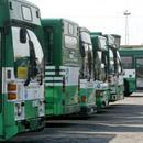 Автобусы ТАК. Фото: Михкель Марипуу с сайта газеты Postimees .